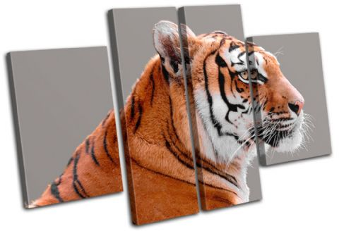 Tiger Wildlife Animals - 13-1524(00B)-MP17-LO